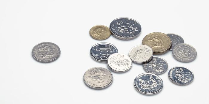 シンガポールのコイン