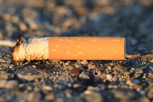 ポイ捨てされたタバコ