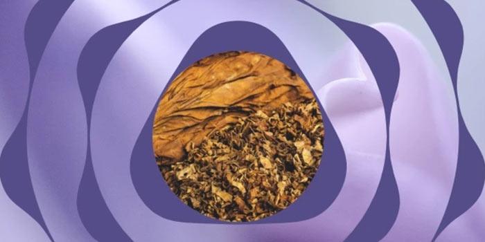 2021年10月に値上げのテリアのヒートスティック:フレーバータバコ全4種類