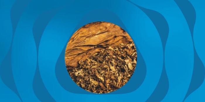 2021年10月に値上げのテリアのヒートスティック:レギュラータバコ全4種類