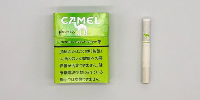 最新型プルームエックスのタバコスティックの値段を解説⑫:キャメル メンソール マスカットグリーン